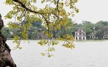 Hà Nội sẽ chi 30 tỷ đồng nạo vét bùn làm sạch Hồ Gươm.