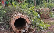 Mưa lụt gây ảnh hưởng nghiêm trọng đến diện tích hồ tiêu ở Đắk Lắk