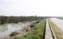 Rừng bần Hưng Hòa, Nghệ An là khu rừng ngập mặn có ý nghĩa bảo vệ hệ thống đê điều, chống xói lở…
