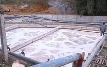 Bể xả của Cty Nguyên Hồng, gây ô nhiễm nghiêm trọng.