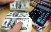 Giá USD hôm nay ngày 2/2 tăng nhẹ