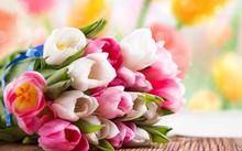 Bói vui: Tử vi cung hoàng đạo thứ 6 của bạn (15/4/2016)