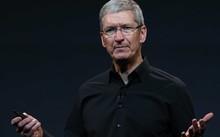 CEO Apple Tim Cook lên tiếng bênh vực giới đồng tính
