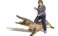 Cụ bà hơn 70 tuổi săn cá sấu, lái máy bay, bắn súng như phim hành động