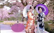 30 suất học bổng thạc sĩ tại Nhật dành cho cán bộ, công chức