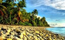 Hàng chục hài cốt bật mộ, trôi dạt vào bờ biển