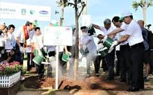 Hơn 110.000 cây xanh được trồng tại Bà Rịa Vũng Tàu