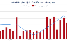 Nông dược HAI được chấp thuận phát hành thêm 67 triệu cổ phiếu