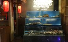 Hải sản tươi sống từ Nhật