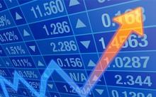 Nữ giám đốc công ty chứng khoán bị khởi tố vì thao túng giá cổ phiếu