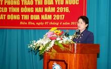 Cảnh cáo Phó Bí thư Đồng Nai vì vi phạm Luật Phòng chống tham nhũng