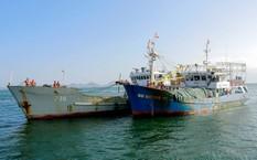 Tàu cá Bình Định được lai dắt vào cảng Ba Ngòi chiều 10/12. Ảnh: M.H.