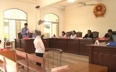 Nam thanh niên 15 tuổi hiếp dâm cháu họ 4 tuổi đã bị tuyên phạt 8 năm tù giam.