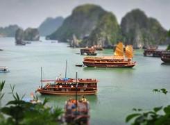 Vịnh Bái Tử Long