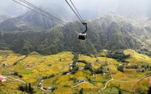 Từ cabin cáp treo nhìn xuống, du khách có thể ngắm khung cảnh hùng vĩ của ruộng lúa vùng cao