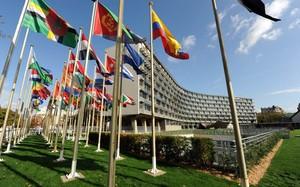 Nhân thành công cuộc bầu cử tổng giám đốc mới của UNESCO: UNESCO – Nhịp cầu hướng đến tương lai