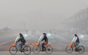 Dự án xe đạp lọc khí có thể cải thiện không khí ô nhiễm ở Trung Quốc. Ảnh: Motherboard.