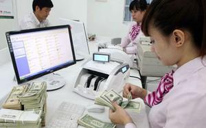 Người Việt chi hơn 3 tỷ USD mua nhà tại Mỹ, khiến Việt Nam mất đi một nguồn ngoại tệ lớn. Ảnh: Như Ý.