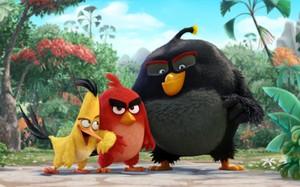 """Những chú """"chim điên"""" sẽ trở lại màn ảnh rộng sau hơn hai năm nữa. Ảnh: Sony."""
