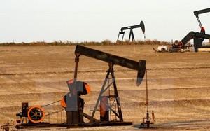 Khai thác dầu tại một giếng dầu ở Ponca City, Oklahoma, Mỹ.