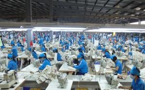 65% doanh nghiệp dệt may sản xuất gia công, sản xuất nội địa chưa đáp ứng được nhu cầu nội địa và xuất khẩu.