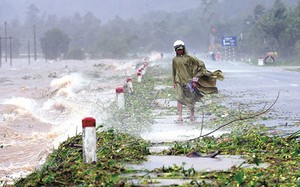 Truyền, phát sai lệch bản tin dự báo, cảnh báo thiên tai khí tượng thủy văn sẽ bị phạt từ 40 - 50 triệu đồng - Ảnh minh hoạ