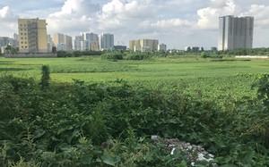 Khu đất dự án BV Đa khoa Quang Trung bị đề nghị thu hồi vì chậm triển khai gần 8 năm nay.