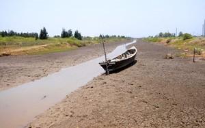 Đồng bằng sông Cửu Long đối mặt với 6 nguy cơ