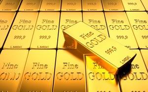 Giá vàng 24/10: Đồng USD trở lại khiến kim quý vàng giữ nguyên mức giá