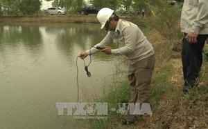 Cơ quan chức năng đang kiểm tra môi trường nước trong hồ nuôi.