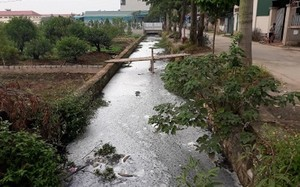 Nước thải làm mương thoát nước ô nhiễm trầm trọng, nổi đầy bọt trắng và bốc mùi xú uế.