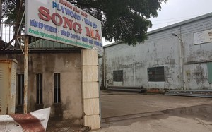 Xưởng sản xuất ván ép Song Mã.