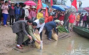 Lãnh đạo huyện Con Cuông và chính quyền địa phương tham gia thả cá xuống sông Giăng.
