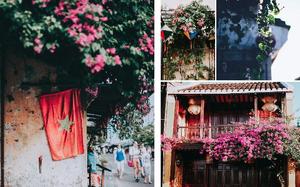 Nhiều điểm đến du lịch nổi tiếng xuất hiện trong các bài dự thi với những góc nhìn mới lạ