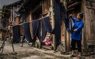 Bà Yang treo những tấm vải mới nhúng thuốc nhuộm lên sào để phơi khô. (Nguồn: NYTimes)
