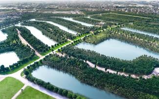 Ecopark Grand đã hoàn thiện phần quy hoạch và trồng phủ cây xanh