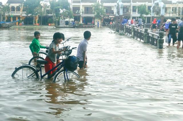 Dịch vụ 'ngắm lụt' Hội An bằng ghe đắt khách mùa lũ - ảnh 2
