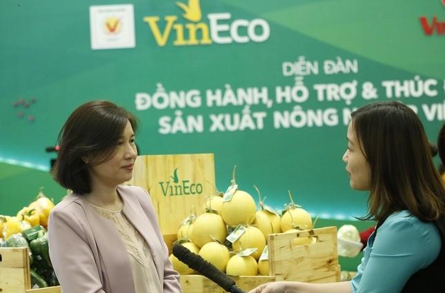 VinEco và văn hóa làm nông nghiệp an toàn - ảnh 1