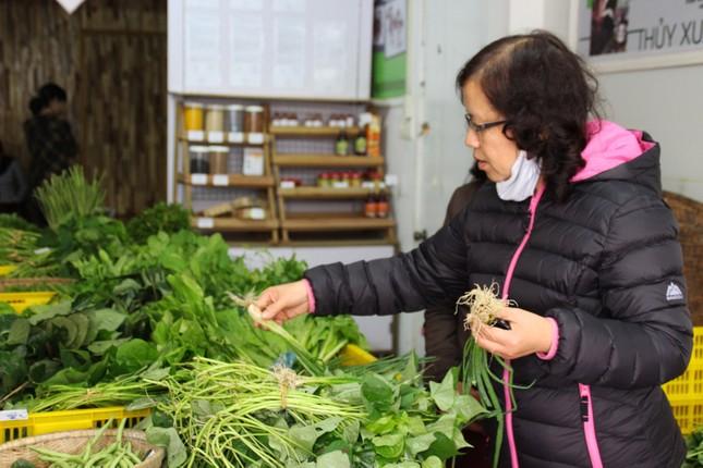 Cô gái Nhật đến Huế bán rau sạch - ảnh 2