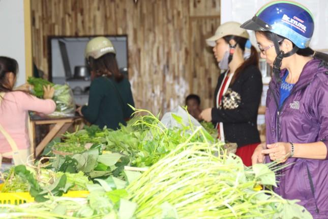 Cô gái Nhật đến Huế bán rau sạch - ảnh 3