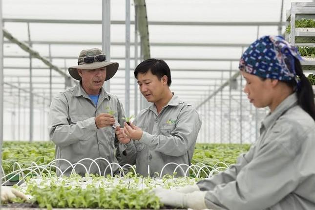 VinEco và văn hóa làm nông nghiệp an toàn - ảnh 3