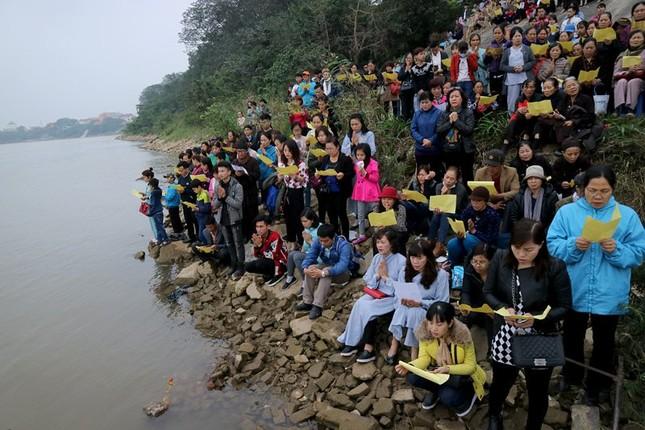 Nghìn người dự lễ phóng sinh gần 10 tấn cá xuống sông Hồng - ảnh 8