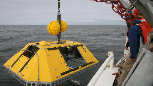 UNESCO lần đầu công bố báo cáo về khoa học đại dương trên thế giới - ảnh 2