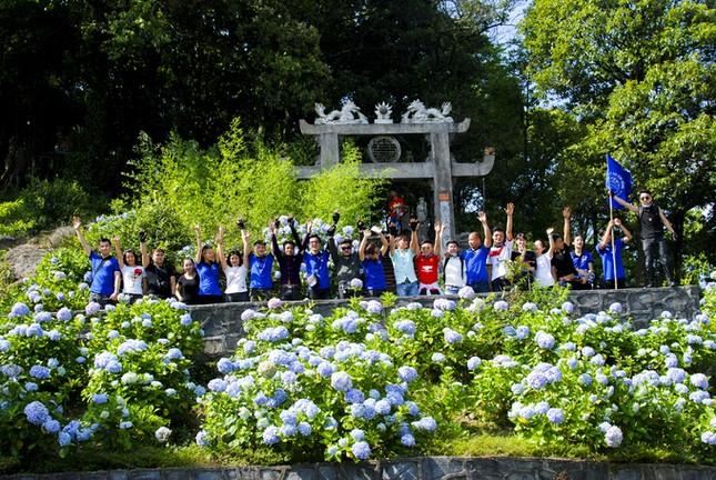 Vườn hoa cẩm tú cầu cách Hà Nội hơn 200km   - ảnh 5