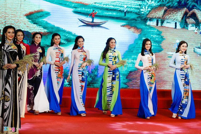 Hoa khôi Nam Bộ 2017 gọi tên Nguyễn Thị Hải Yến  - ảnh 1