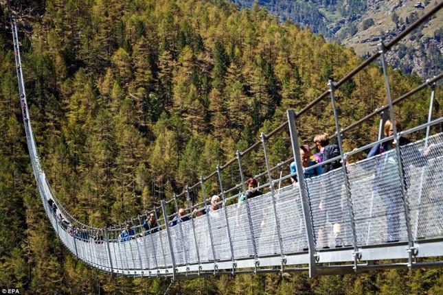 Cầu treo đi bộ dài nhất thế giới mở của đón du khách - ảnh 1