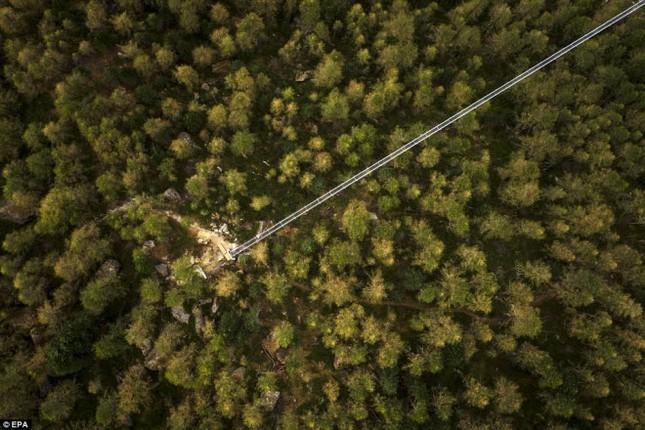 Cầu treo đi bộ dài nhất thế giới mở của đón du khách - ảnh 5