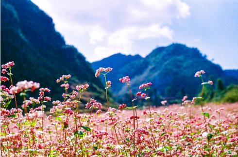 Những điểm du lịch đẹp nhất mùa Thu-Đông Việt Nam - ảnh 1
