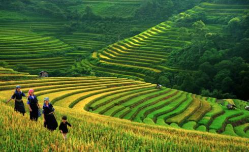Những điểm du lịch đẹp nhất mùa Thu-Đông Việt Nam - ảnh 2