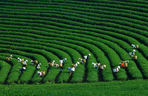 Những điểm du lịch đẹp nhất mùa Thu-Đông Việt Nam - ảnh 3
